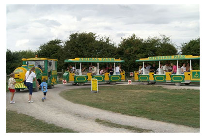 Whats On Cardiff Animal Farm Adventure Park