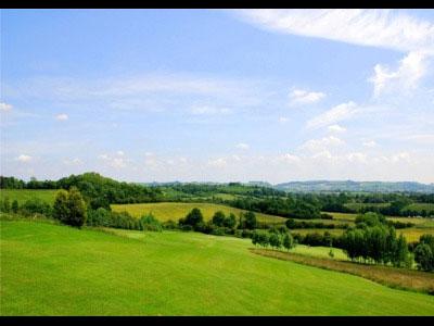 Shortwood Golfing
