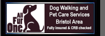 All Fur One Dog Walking and Pet Care Bristol