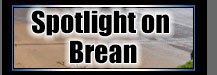 Spotlight on Brean